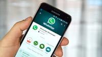 WhatsApp upgrade GIF e membri temporanei