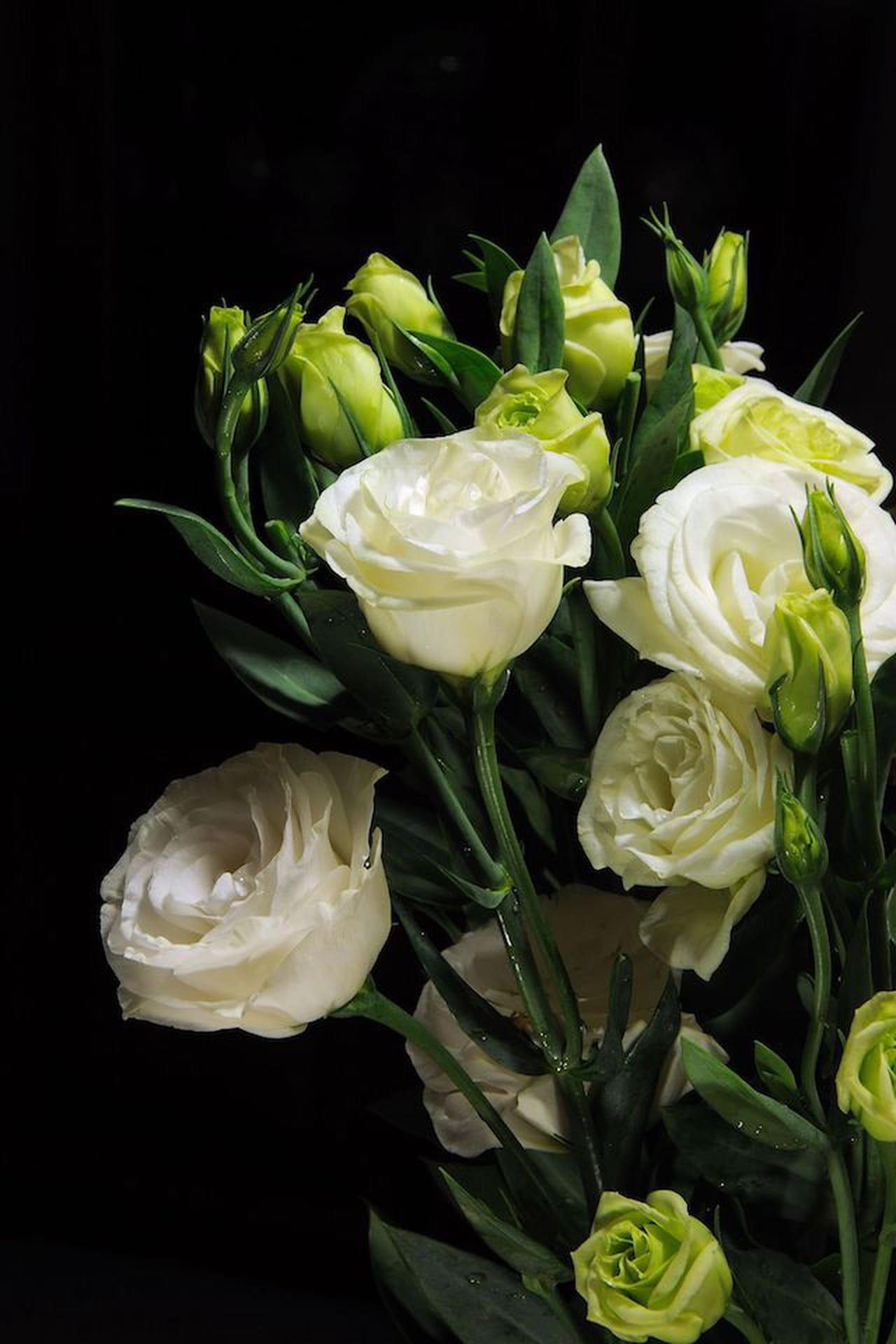 Nomi Fiori Bianchi Matrimonio.Lisianthus Bianco Il Fiore Per Matrimonio Il Fiore Che Arreda